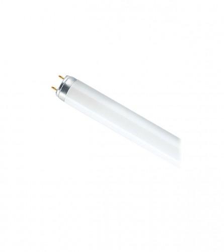 OSRAM Fluorescentna cijev 18W765