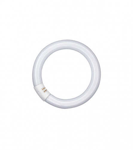 OSRAM Fluorescentna cijev L 22 W-840 G10Q