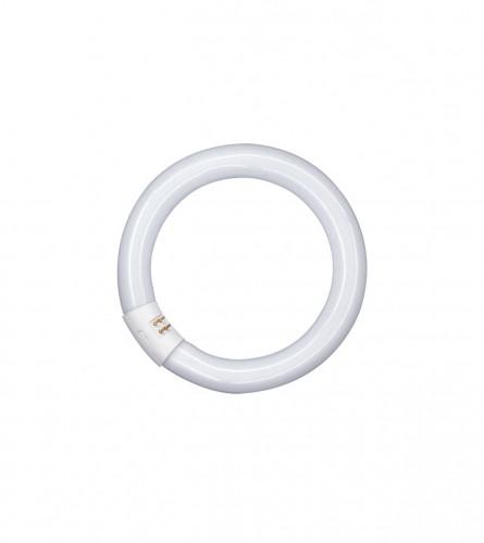 OSRAM Fluorescentna cijev L 40W-840 G10Q