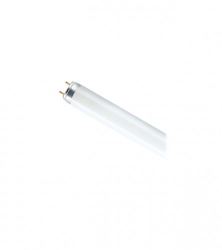 Fluorescentna svijev L 36W-765