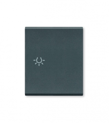 ALING-CONEL Taster za svjetlo 65821.A